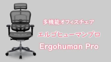 エルゴヒューマンプロ 多機能高級ワークチェアを買った理由
